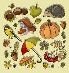 Set of autumn symbols vector