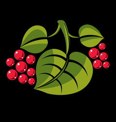 spring or summer leaf simple icon nature and vector image