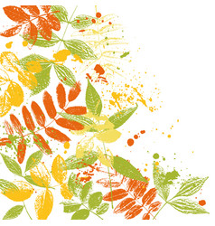Tempalte with leaves silhouettes vector