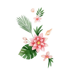 watercolor composition lotus flower and vector image