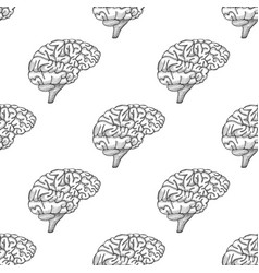 engraving brain hand drawn pattern vector image