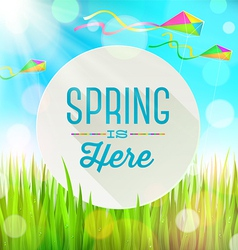 Spring greeting banner on landscape with kites vector image