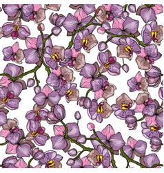 botanical floral background hand drawn wallpaper vector image
