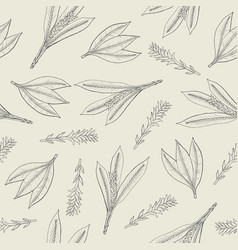 Botanical seamless pattern with turmeric leaves vector