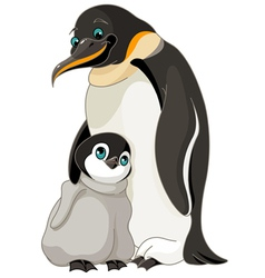 Emperor Penguin With Chick vector image