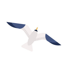 flying seagull flat gliding vector image