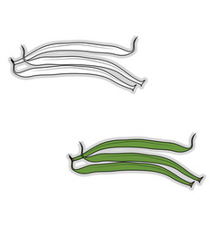 fresh french beans on white background vector image