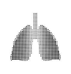 Lungs black icon white background vector
