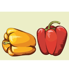 Peppers vegetable isolated vector image