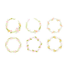 set of spring flower herbs wreath flat abstract vector image