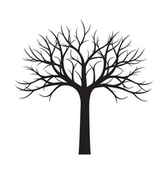 Shape of black tree without leaves vector