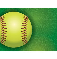 Softball on Grass Textured Field vector image
