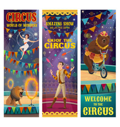 circus acrobat juggler trained bear lion animal vector image