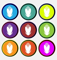 Corn icon sign Nine multi colored round buttons vector