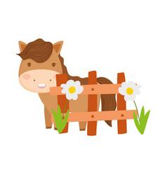 cute horse fence and flowers farm animal cartoon vector image