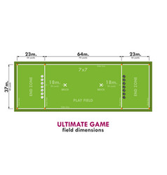 dimensions of the field for the game with a vector image