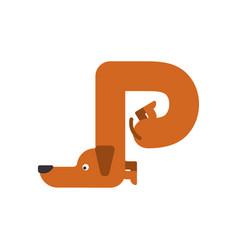 letter p is dog pet font dachshund alphabet vector image