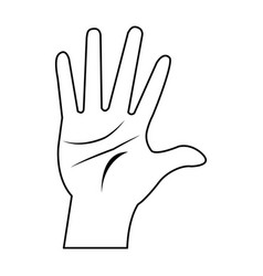Male palm hand gesture adult image vector