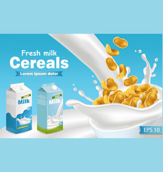 milk and cereals realistic with splash vector image