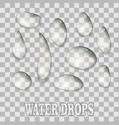 water drops condensation on transparent background vector image