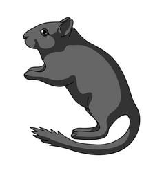 gray gerbilanimals single icon in cartoon style vector image vector image