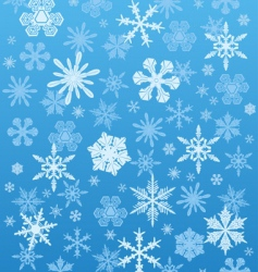 snowflakes background winter vector image vector image