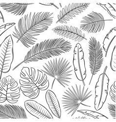black and white tropical leaves and feathers vector image