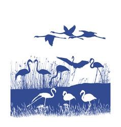 Flamingos on shore vector