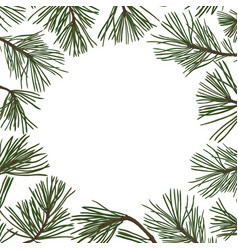 Pine branches with green needles vector
