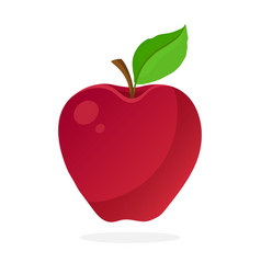 Red apple with stem and leaf vector