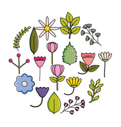 set flowers garden decorative circular frame vector image
