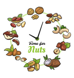 Time for nuts vector