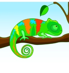 chameleon on the branch vector image
