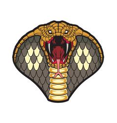 Cobra head vector
