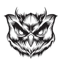 Head owl vector