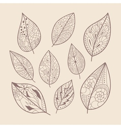 Leaves doodle vector