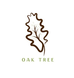 oak tree in the leaf vector image
