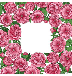 Peonies squared frame vector
