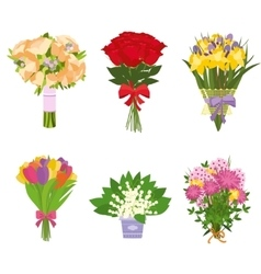 set flowers isolated vector image
