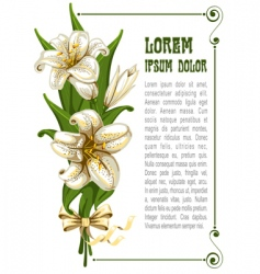 bouquet with lilies vector image vector image