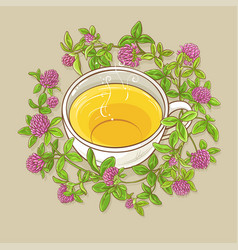 cup of clover tea vector image vector image