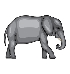 a big elephant vector image vector image