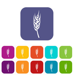 Barley spike icons set flat vector