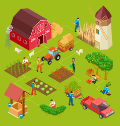 fruits and vegetables farm isometric gardening vector image