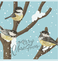 funny tits and bird feeder on winter tree under vector image