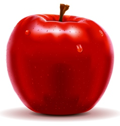 Red Apple Isolated on White vector image
