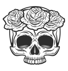 vintage human skull with rose flowers vector image
