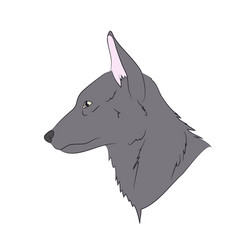 Wolf portrait vector