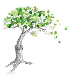 Tree with green leaves vector image
