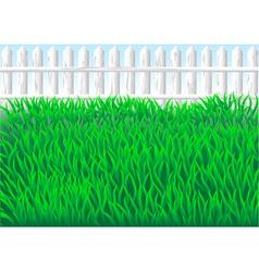 garden grass vector image